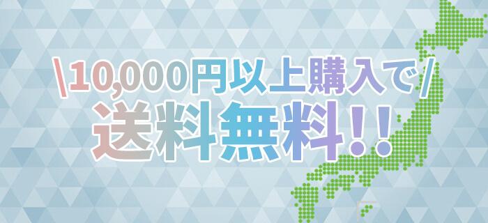 キャンペーン1万円購入で送料無料