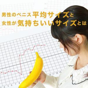 日本人のペニス平均サイズと女性にとって気持ち良いサイズとは
